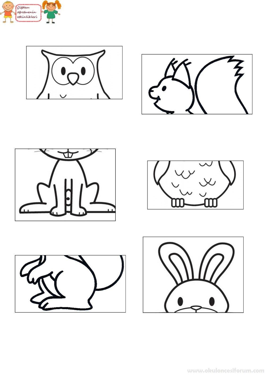 Hayvanlarin Yarisini Bulma Oyunlari Okul Oncesi Boyama