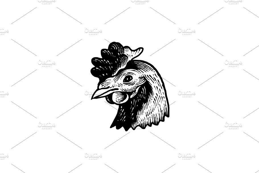 Chicken Head Art Design Composition Design Art Design Design