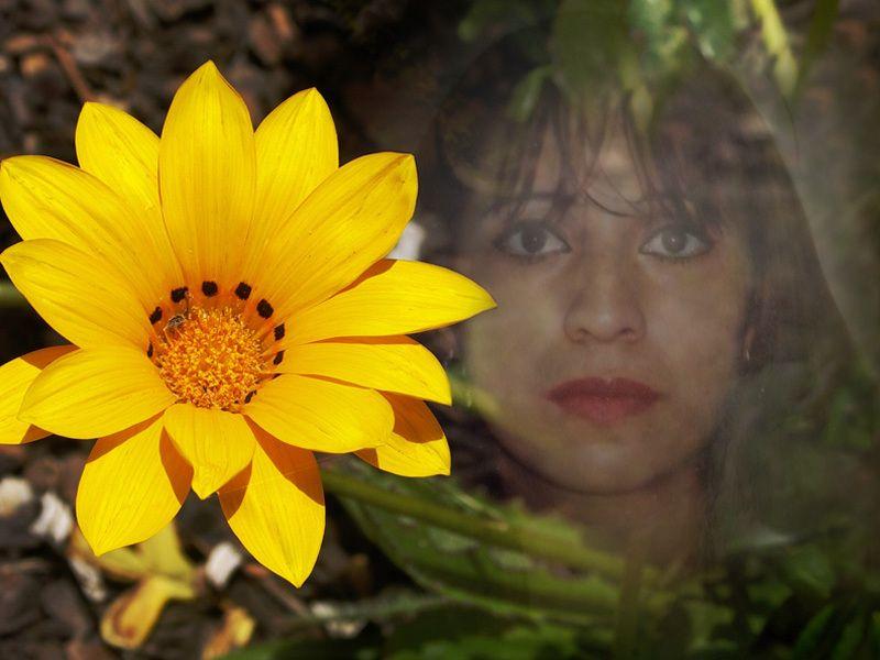 Amarillo y naturaleza