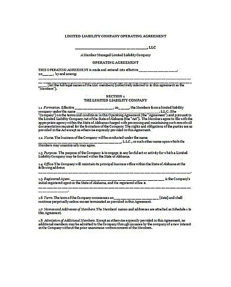 florida llc operating agreement , 23+ LLC Operating Agreement - operating agreement