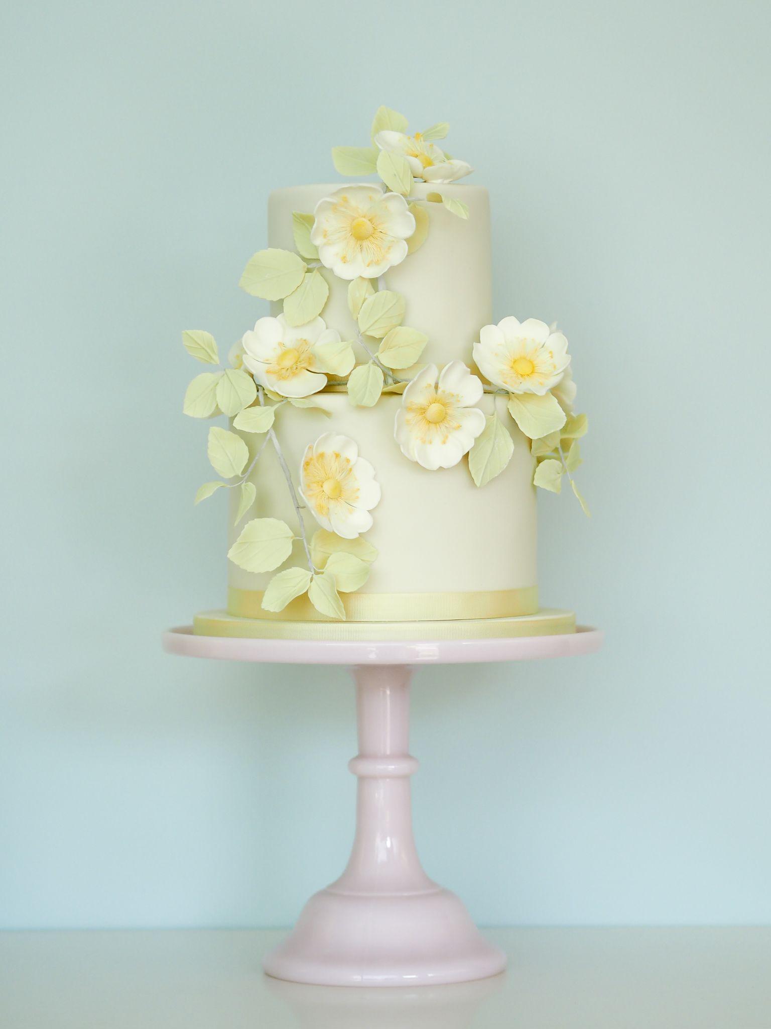 """Rosalind Miller's """"Briar Rose"""" cake"""