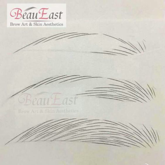 Pin by shannon kettler on microblading pinterest brows for Drawing eyebrows on paper