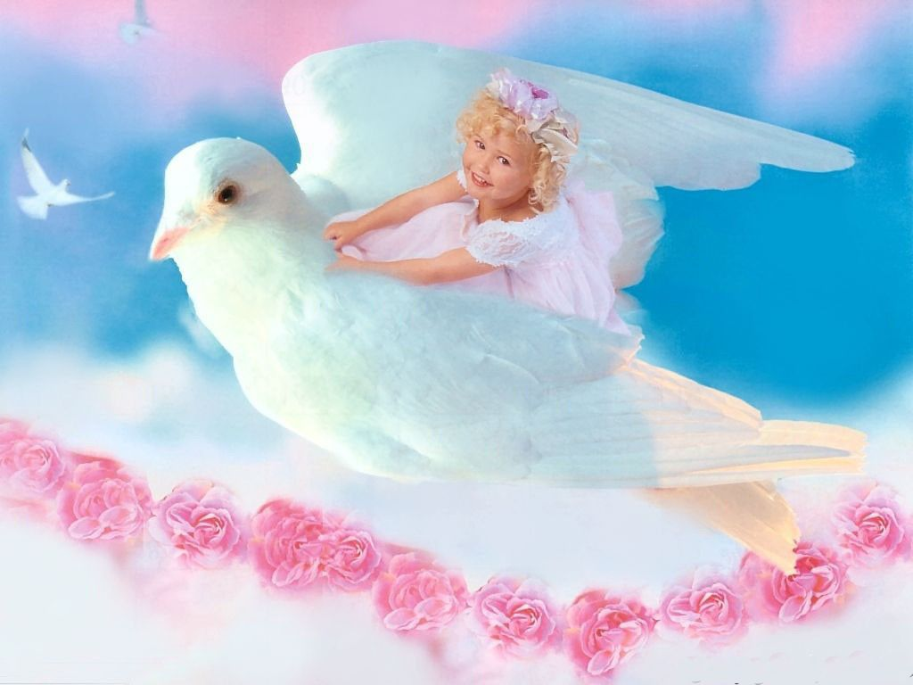 sweets for angels The pictures of angels displayed here are the ones that speak of phases and postures while being 20 beautiful pictures of angels 25 sweet pictures of tinkerbell.