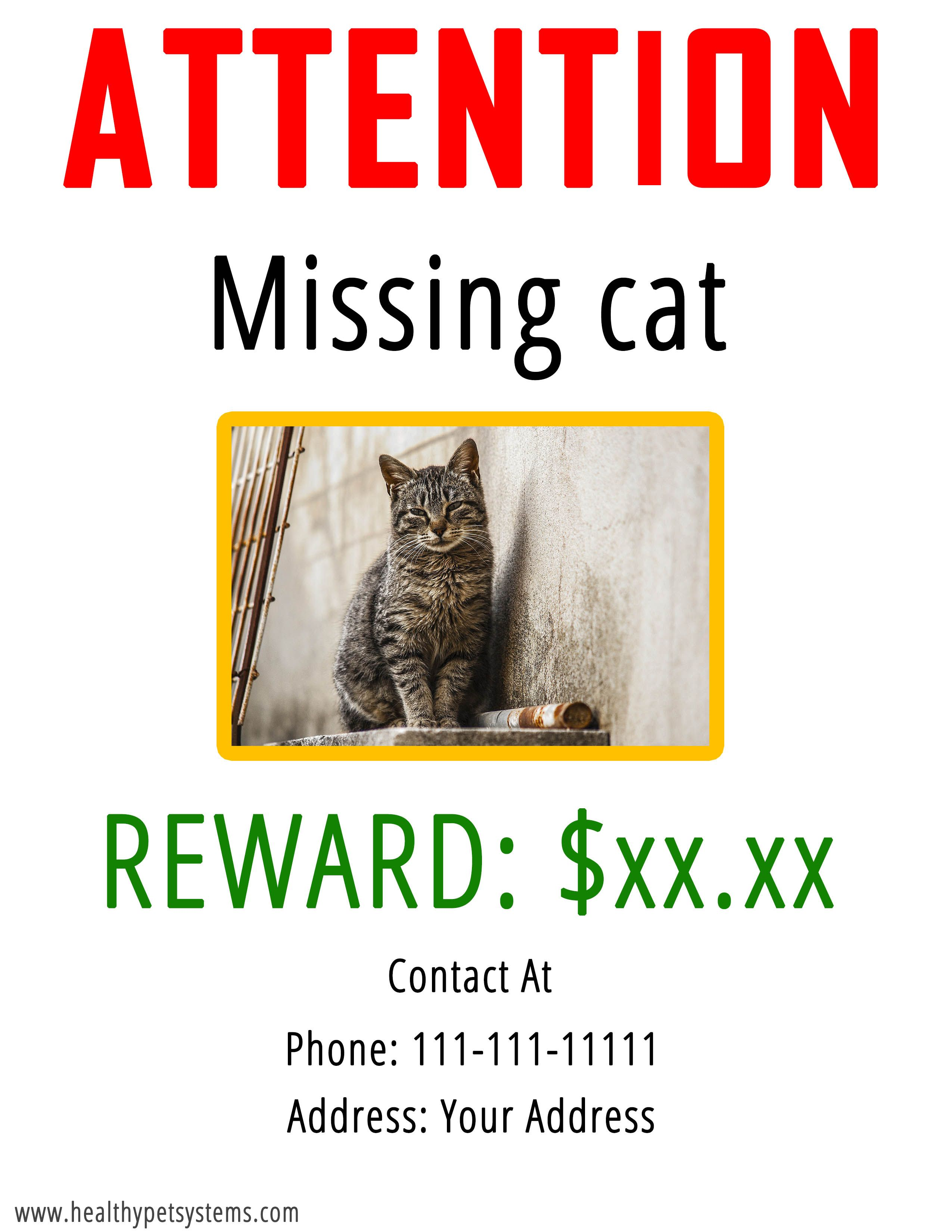 How To Find A Lost Cat Missing Cat Poster Lost Cat Finder Missing Cat Poster Pet Quotes Cat Lost Cat