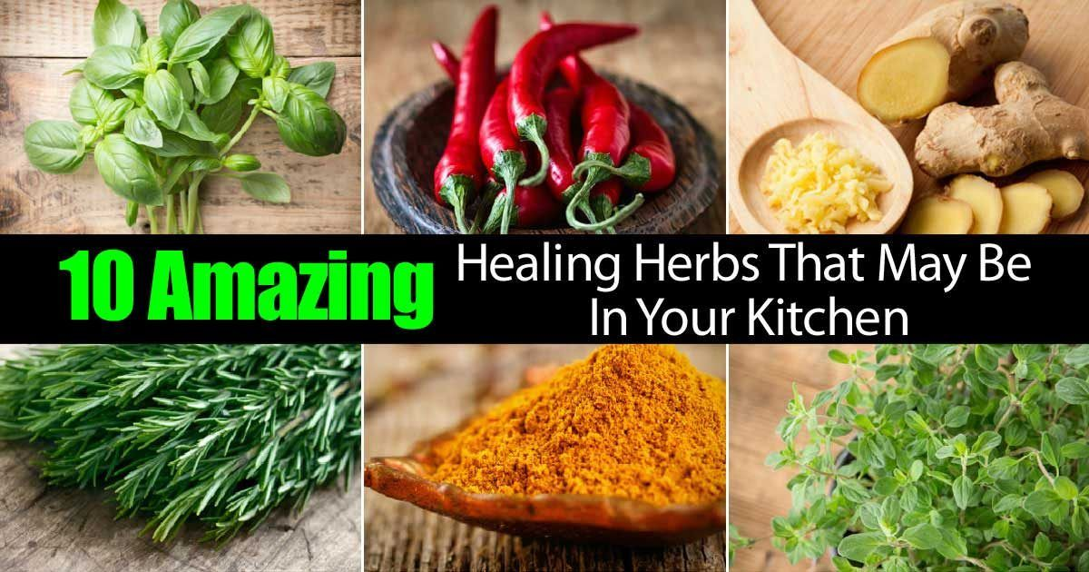 10 Herb Gardening Mistakes And How To Avoid Them Healthy Herbs