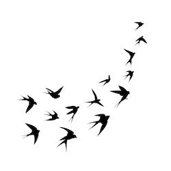 Stock Image Animals Wildlife Black And White Birds Bird Silhouette Tattoos Bird Silhouette