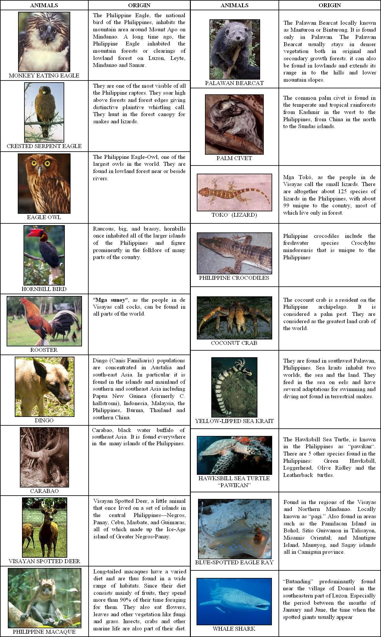 Animals And Their Characteristics With Images