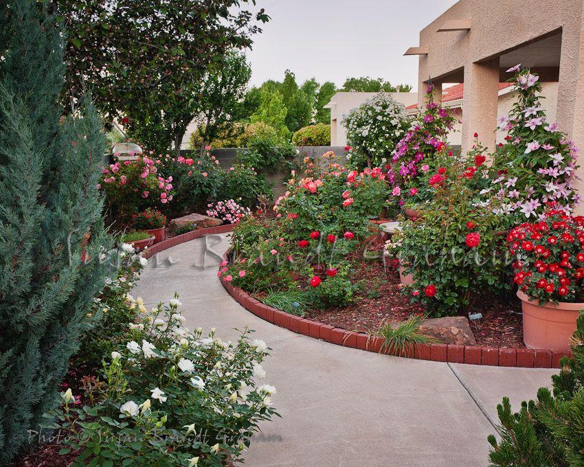 Small Garden With Roses Rose Garden Design Roses Garden 640 x 480