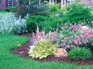 Curb appeal: Spruce up your home with front-yard gardening