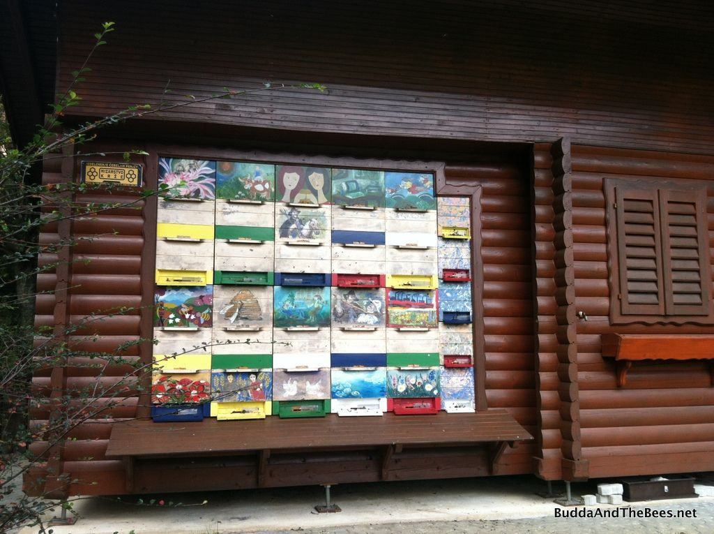 Slovenian Bee Geeking (With images) Bee, Bee houses, Bee