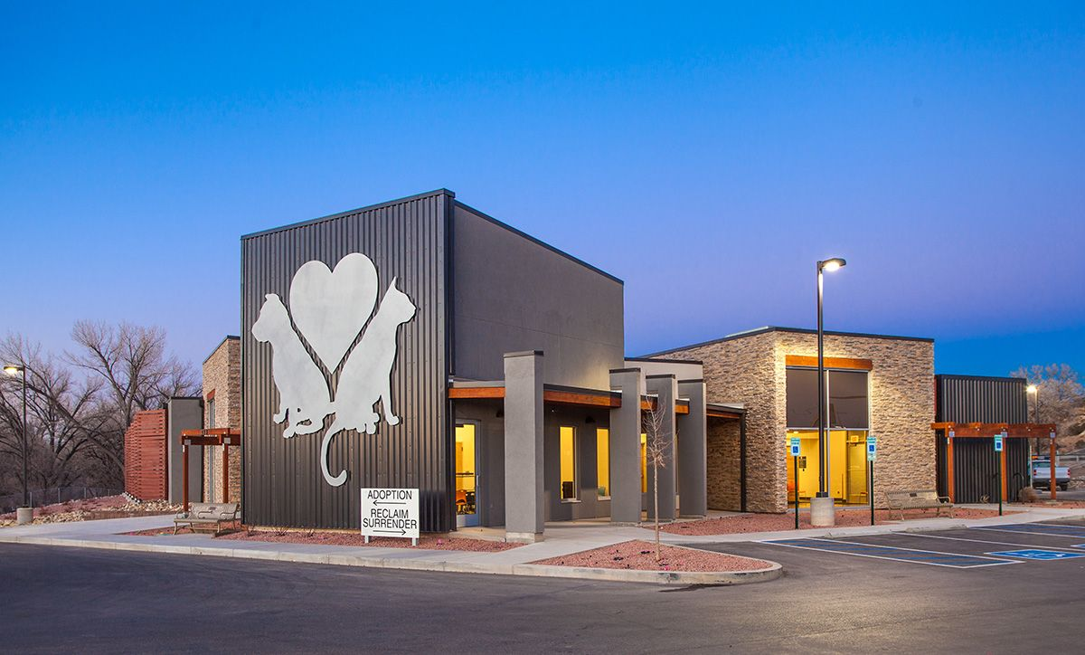 Animal Shelters Animal Shelter Animal Shelter Design Pet Clinic