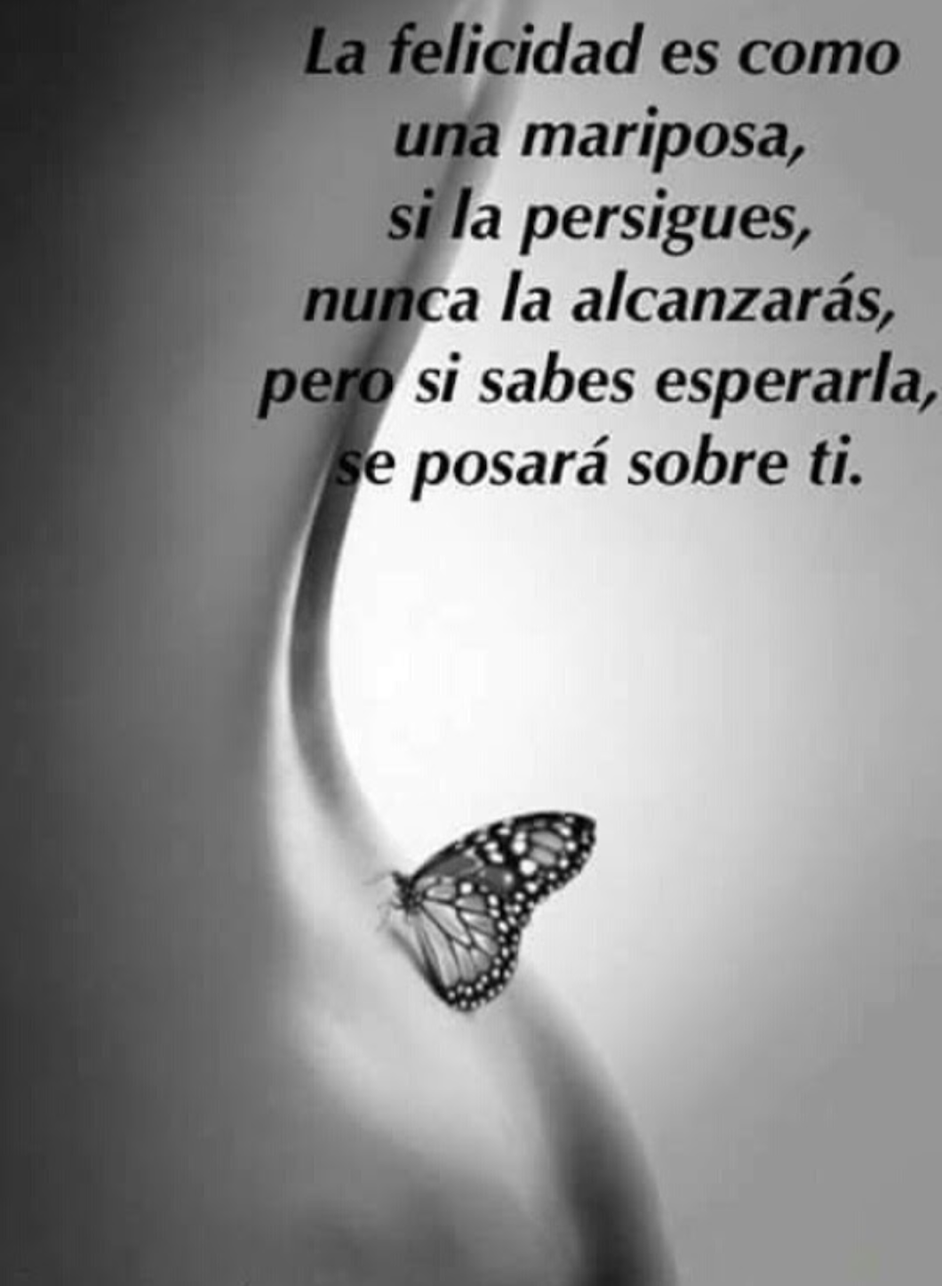 Pin About Frases Lindas E Imagens Frases On Frases De Amor