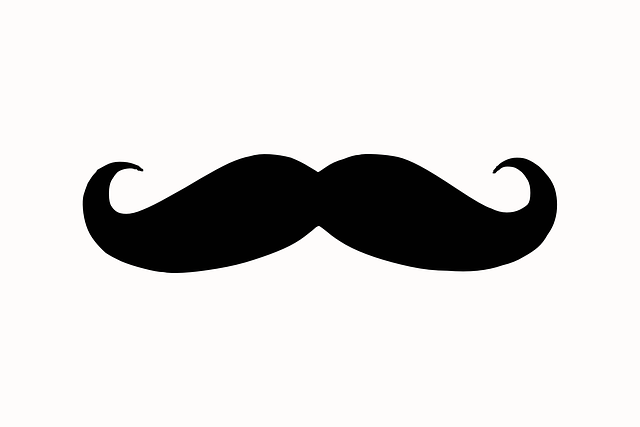 Free Image on Pixabay - Moustache, Silhouette, Face, Hair in 2018 ...