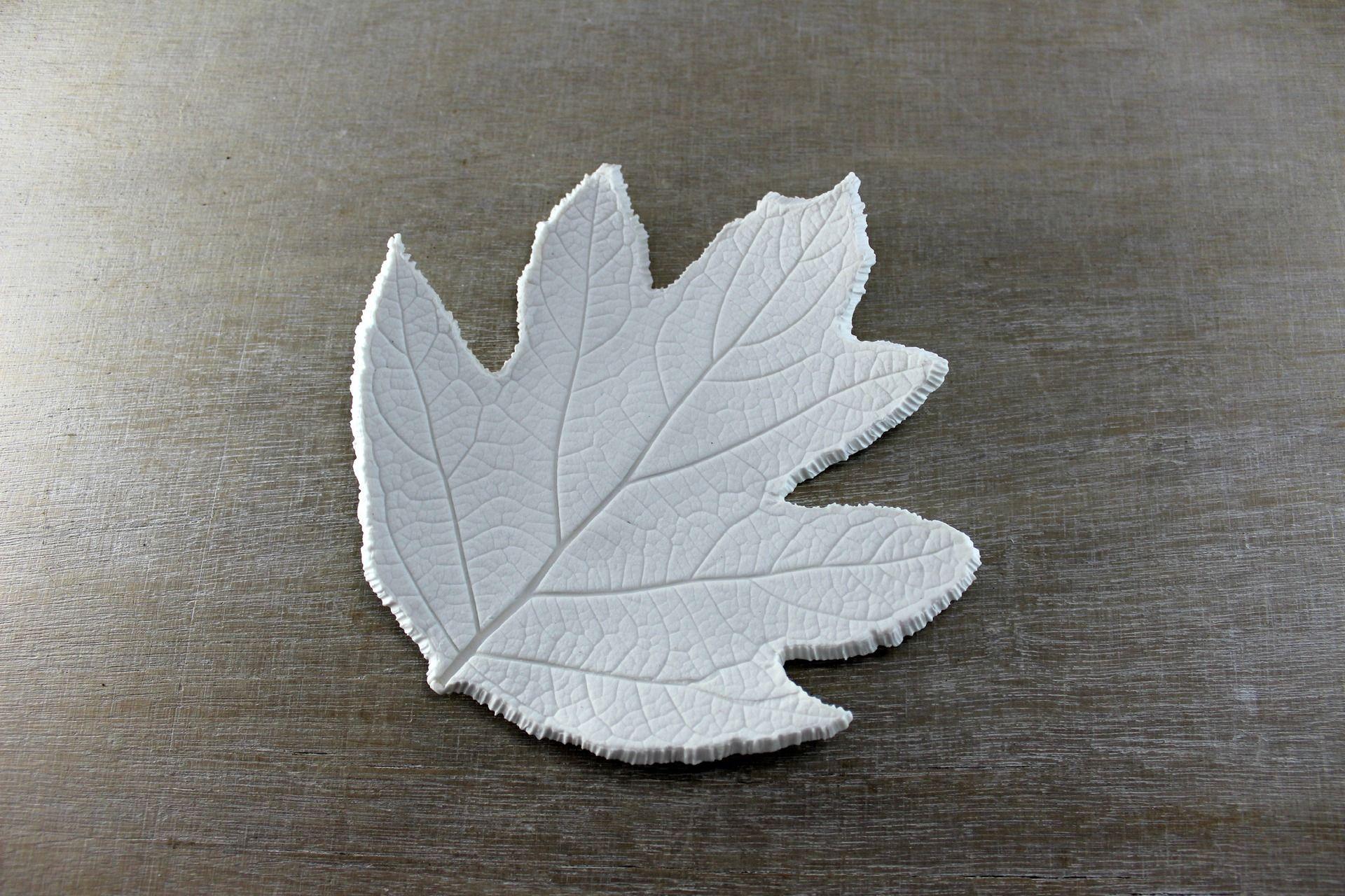 Coupelle feuille blanche en porcelaine empreinte de for Decoration minimaliste