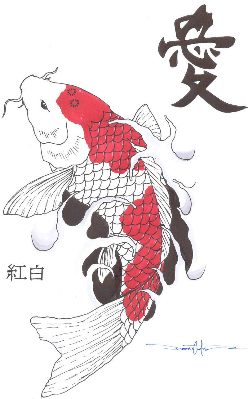 Koi fish drawings kohaku koi fish by schwarze1 for Japanese koi design