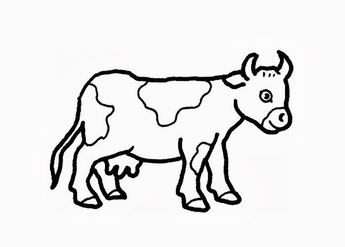 Simple cow coloring sheets cow coloring pages - Teachcolor.com ...