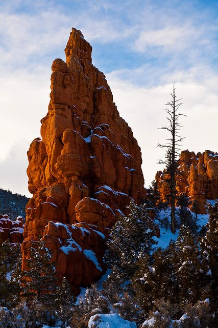 ~ Dixie National Forest ~ Utah....by James Marvin Phelps....
