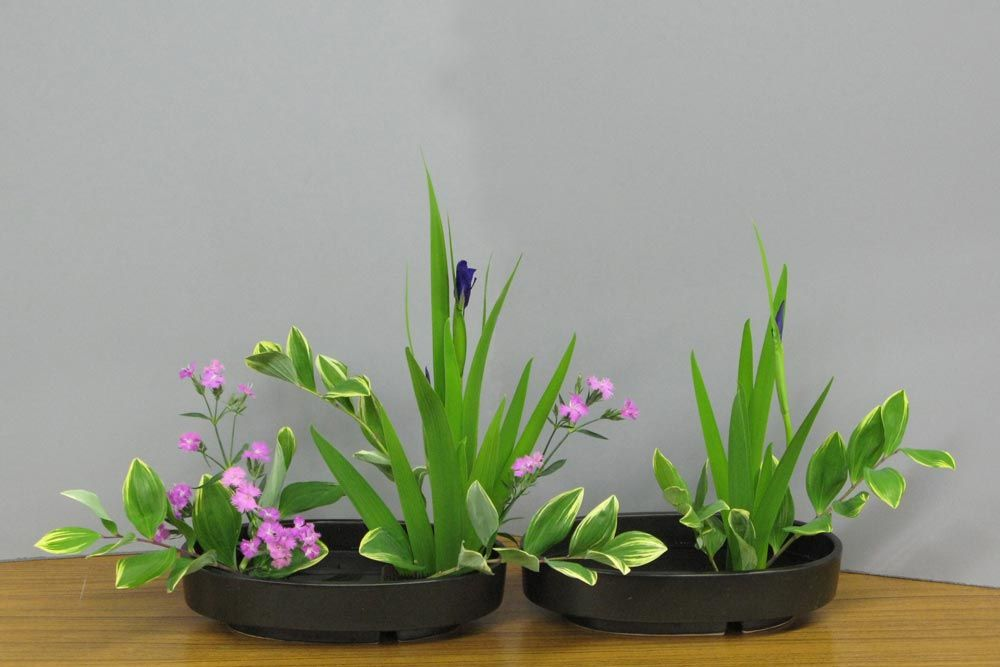 Ecole d'ikebana Ohara La Rochelle / Sud-Ouest - Rimpa - Cours et stages d'art floral japonais (ikebana) de l'école Ohara de Tokyo