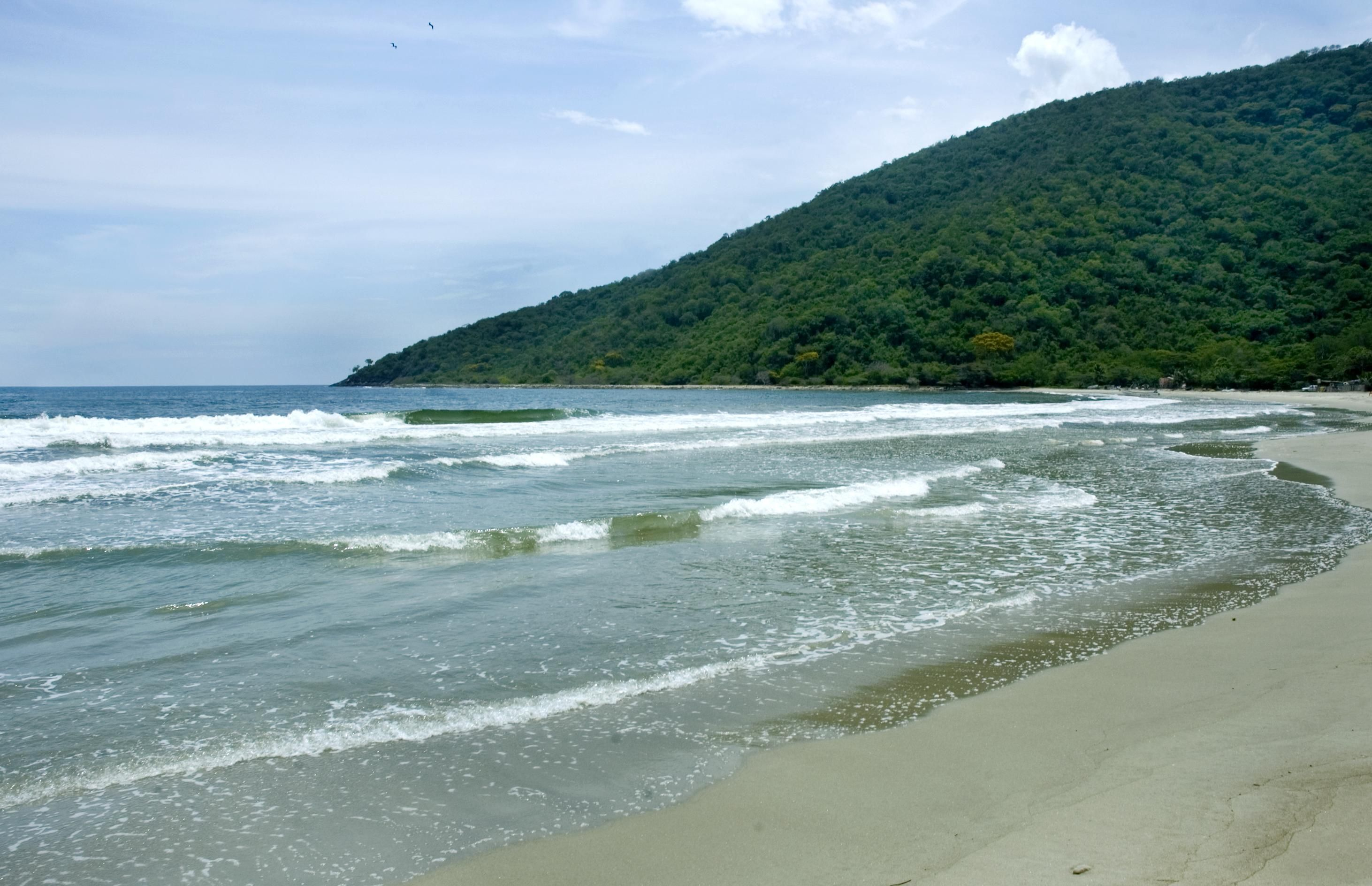 Resultado de imagen para patanemo playa venezuela