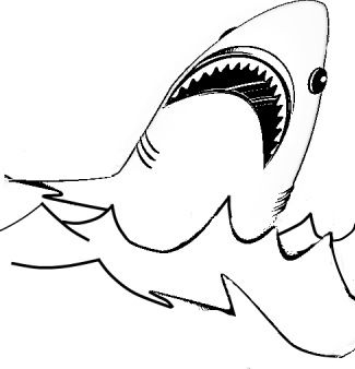 shark coloring pages - Shark Coloring Book