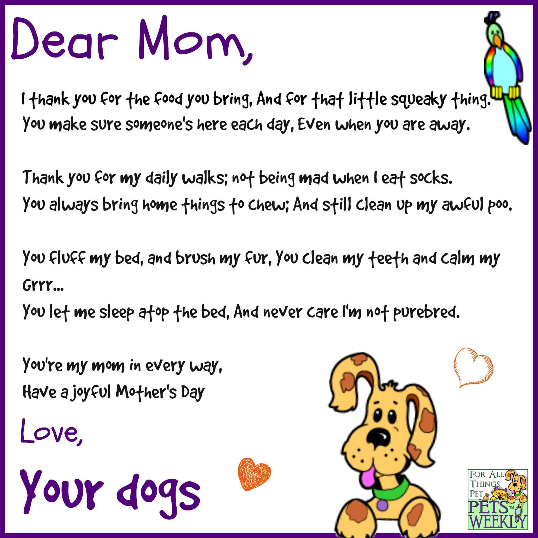 Pin by Pets Weekly on Dogs   Dog mothers day, Dog poems