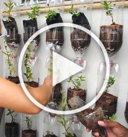 Photo of 56  Trendy Ideas For Pet Bottle Diy Vertical Gardens #diy #pet
