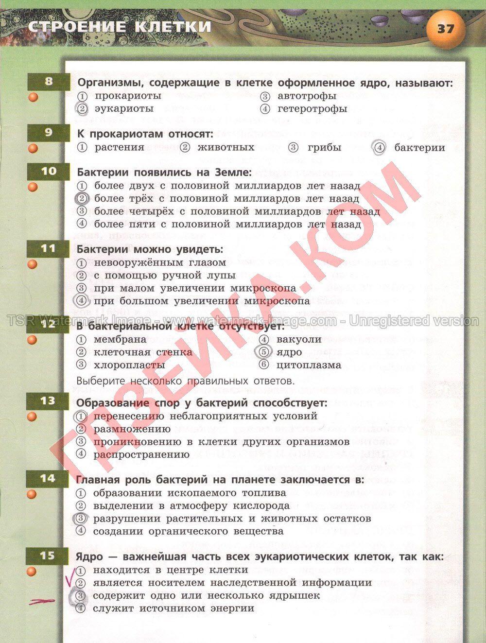 Решебник по украинскому языку 3 класс домашнее задание