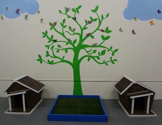 Dog Daycare Reception Area Google Search Dog Daycare Design