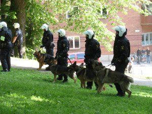 Politely Asking A Fear Mongering Company To Quit Terrifying Parents And The Company S Response Police Dogs German Shepherd Dogs Dogs