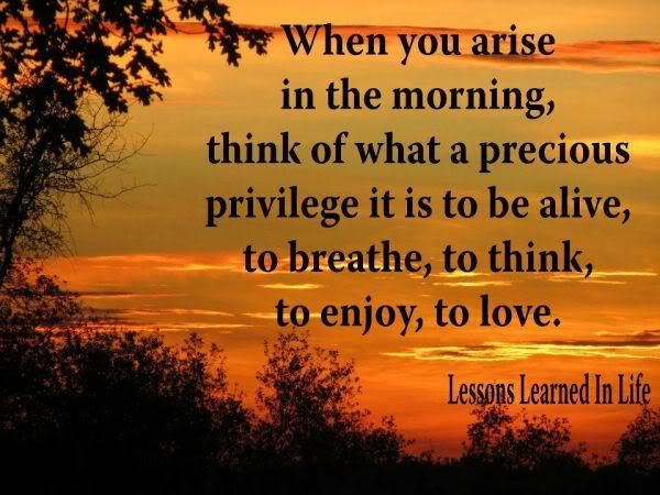 When You Arise In The Morning Think Of What A Privilege It Is To Be