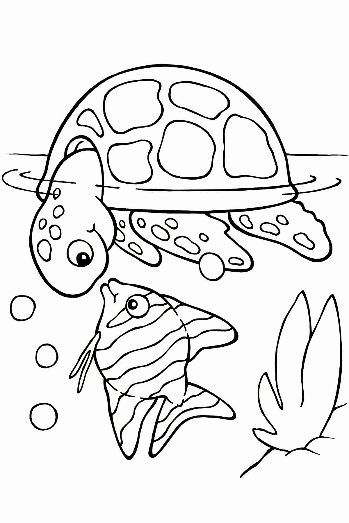 Farm Animal Coloring Sheets Inspirational Lets Coloring Kidsing Pages Sea Animals Animal Book Fr In 2020 Turtle Coloring Pages Animal Coloring Pages Fish Coloring Page