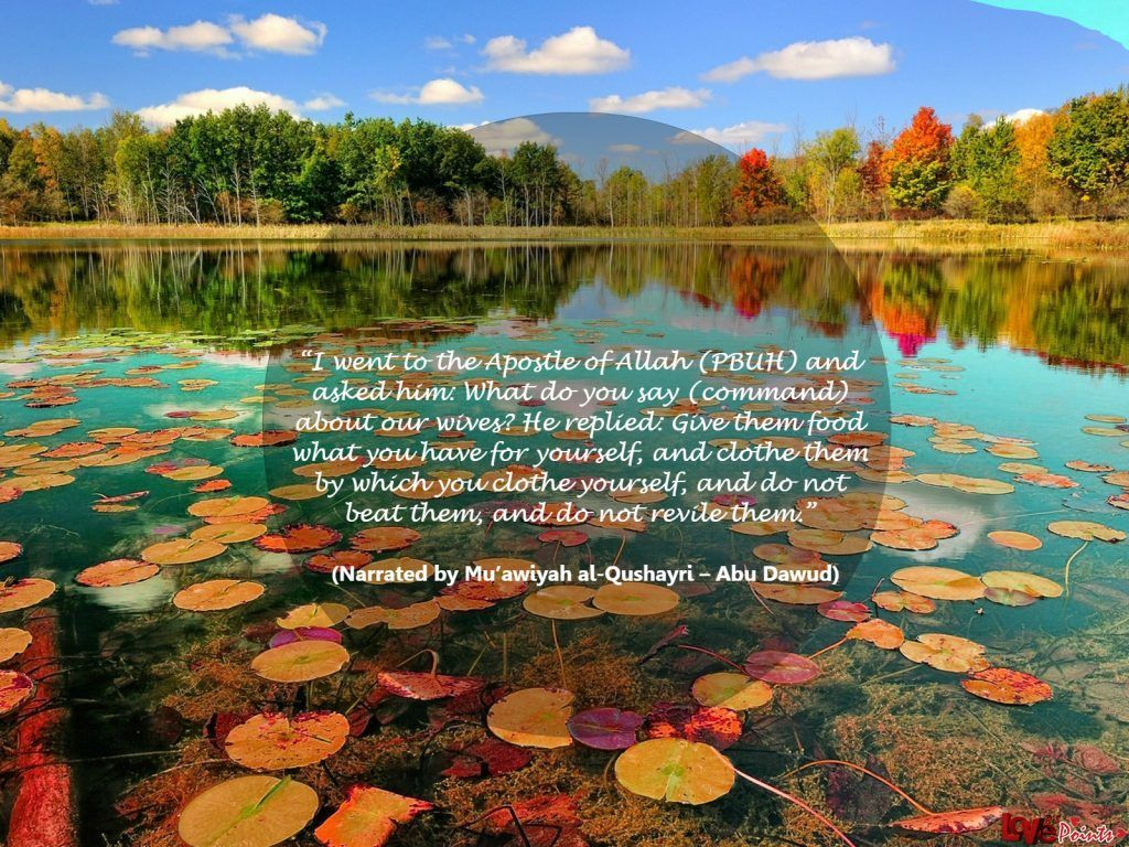 50 Best Islamic Quotes On Women Rights With Images Beautiful Images Nature Beautiful Nature Nature Desktop Wallpaper