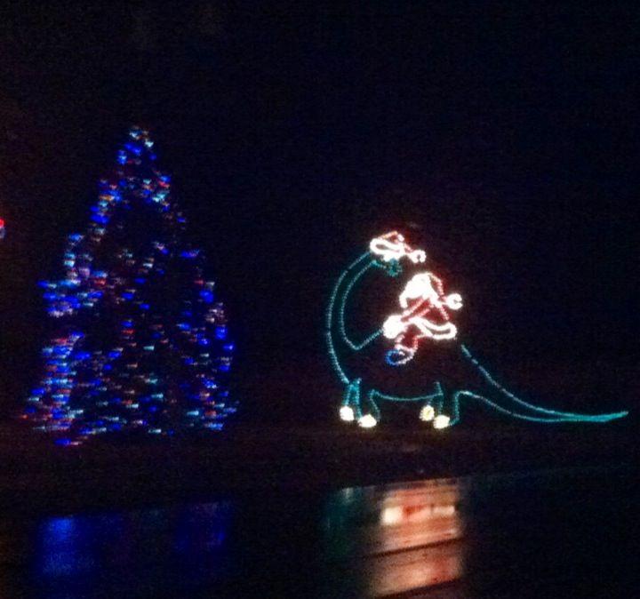 Favorite Christmas Lights | Fuse | Pinterest | Christmas lights