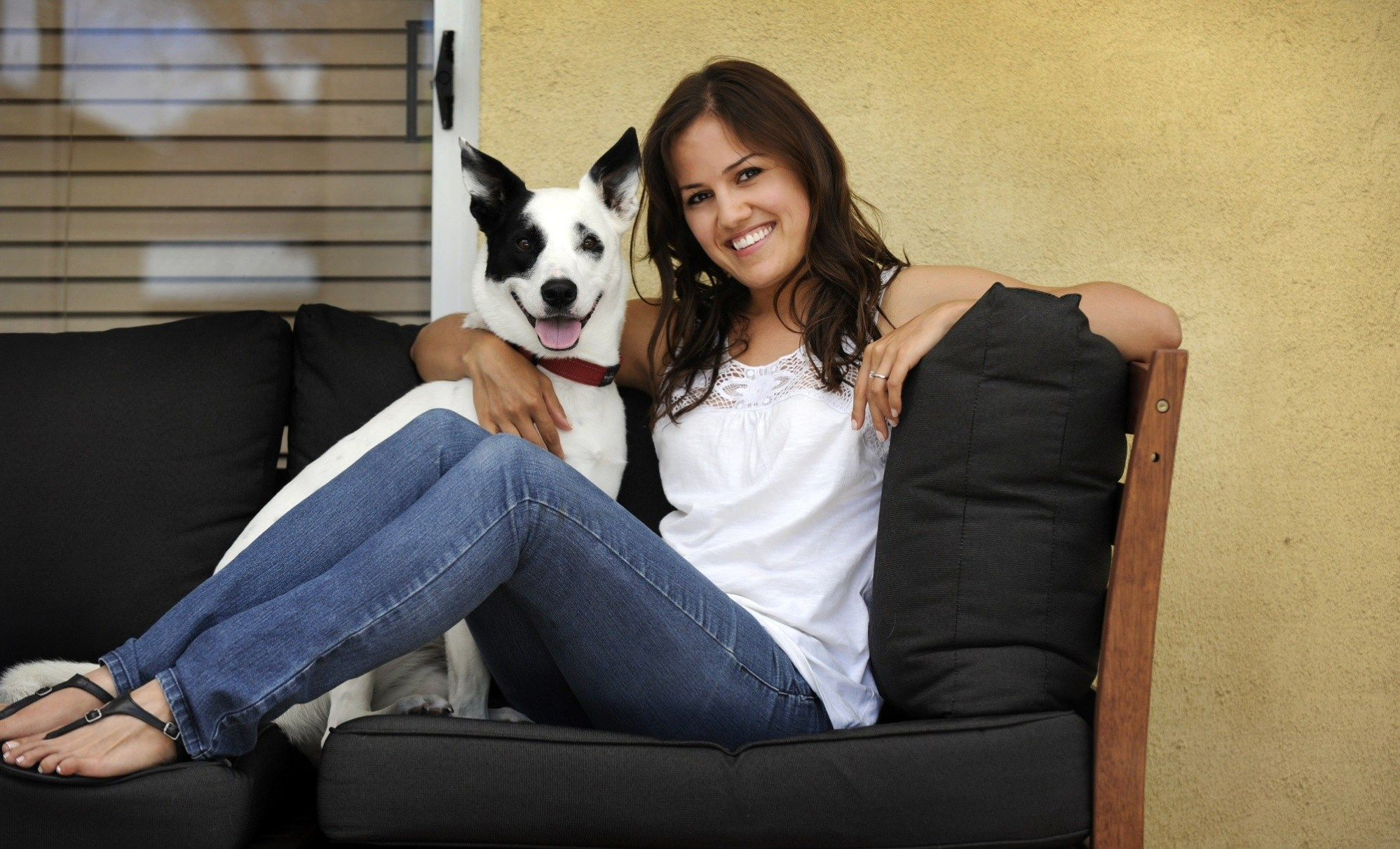 Laurel Craigslist Pets Frontier pets is one of cheyenne's best pet shops. letitsnowglobe co uk