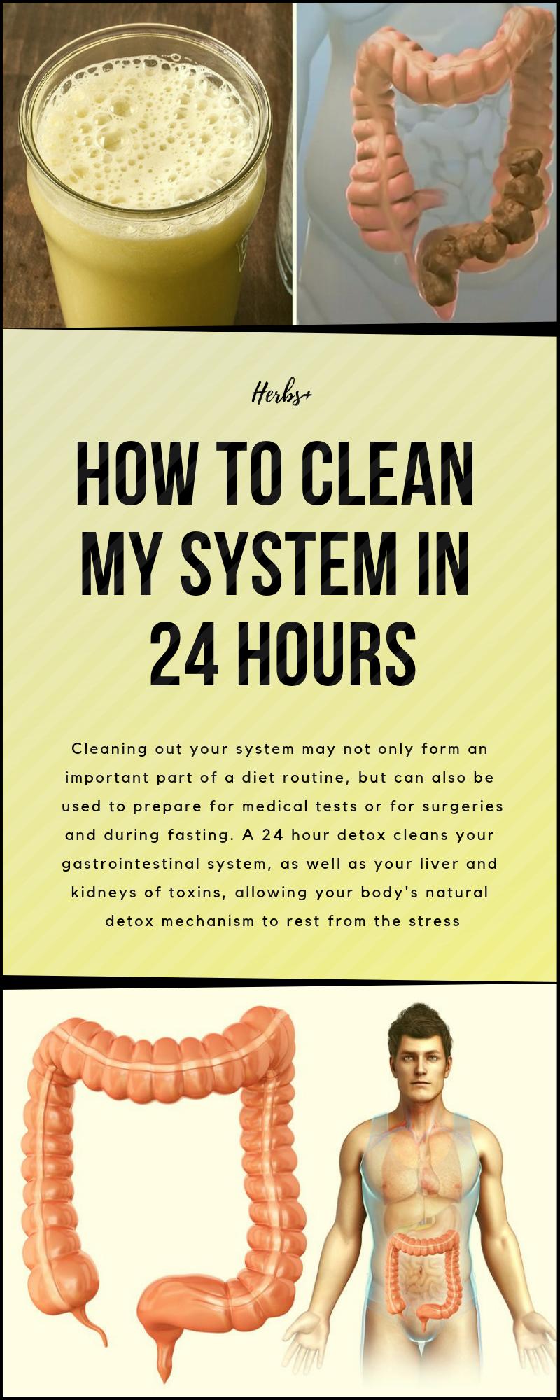 9723455f0c163dbaa21ba28a34b4b7ba - How To Get Rid Of Weed In Your System Quickly