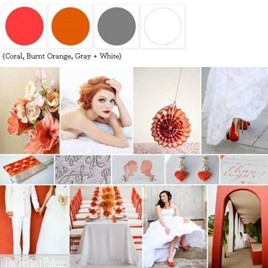crazy for coral