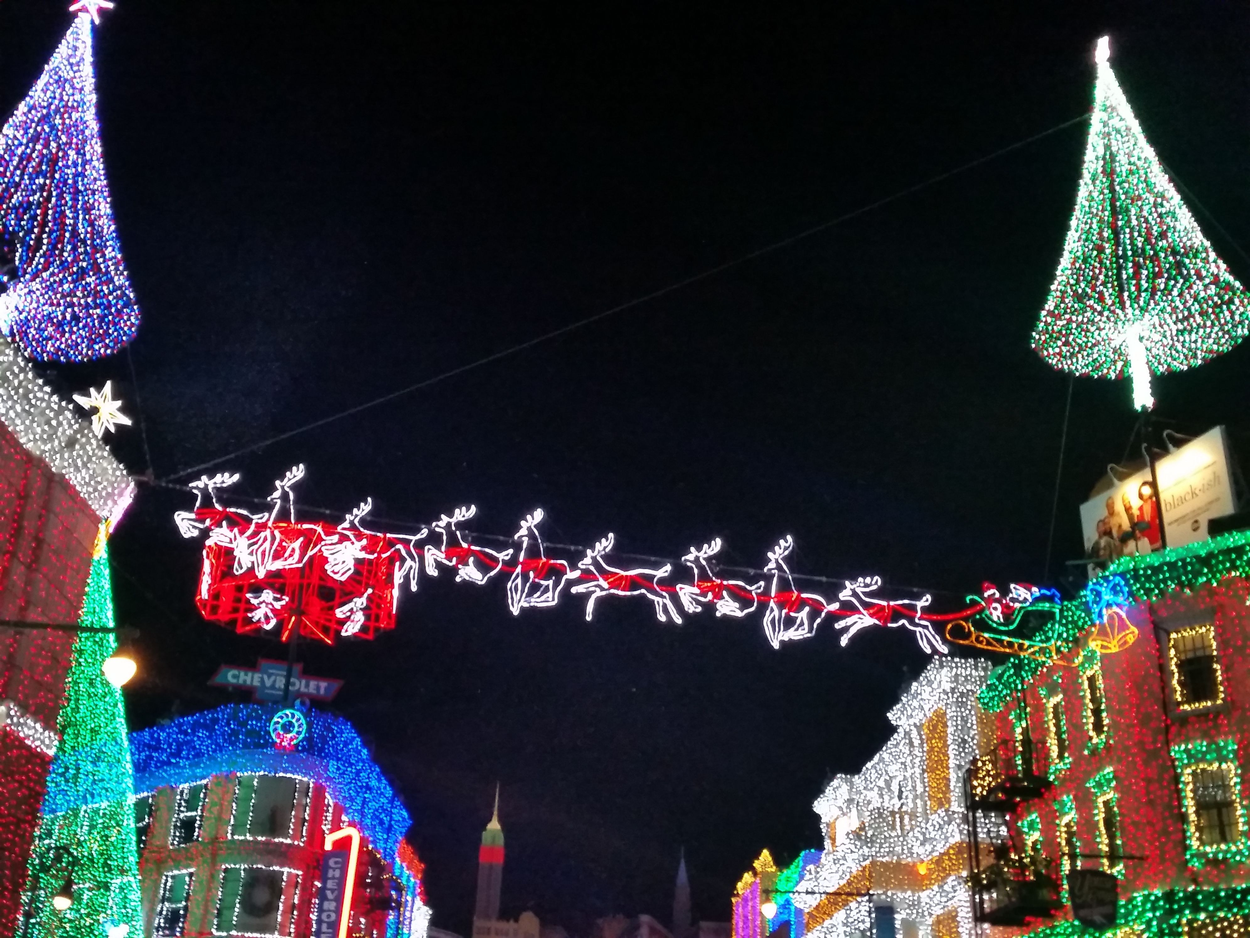 The Osborne Lights at Disneyu0027s Hollywood Studios! Bright holiday lights canopies that glow & The Osborne Lights at Disneyu0027s Hollywood Studios! Bright holiday ...