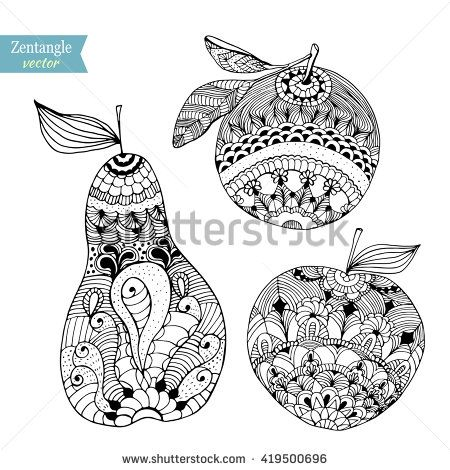 fruits zentangle stylized vector illustration hand drawn pencil apple pear orange lace zen art stock vector