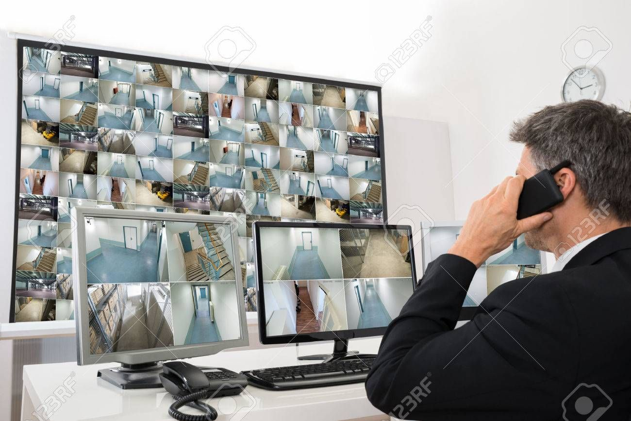 The Security Monitor position provides a system of