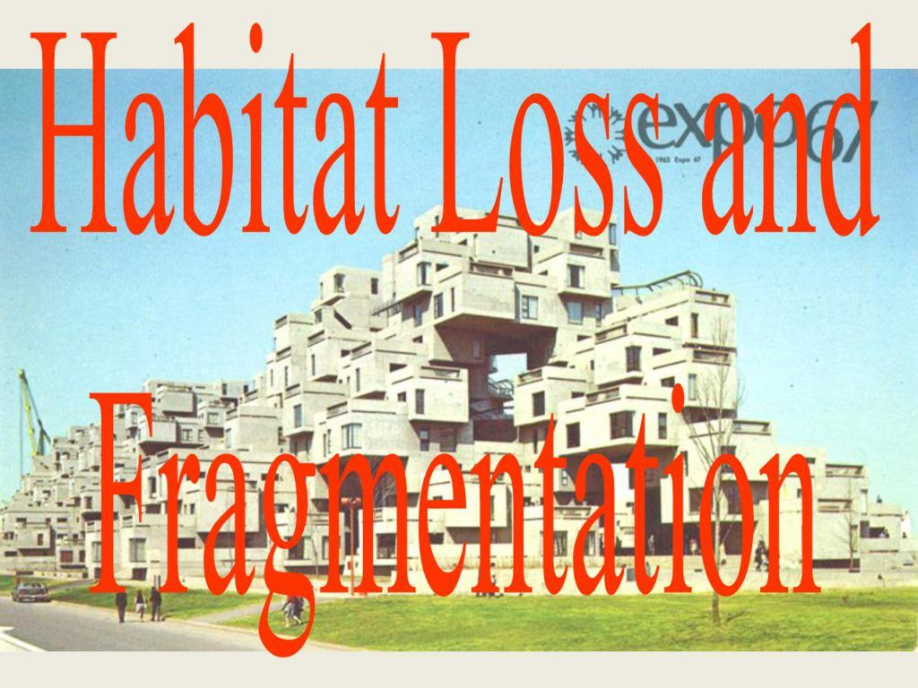 Habitat_Loss Google Slides Biology units, Habitats