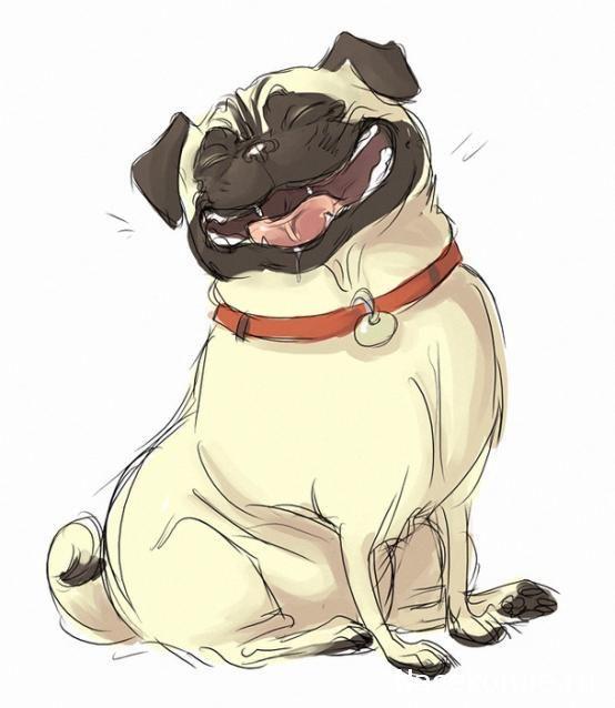 Картинки прикольные с собаками мультяшные надписями, красотка открытка