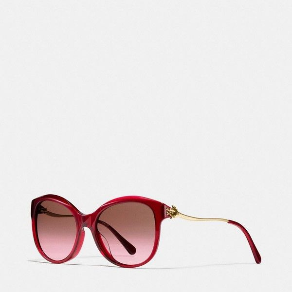 69bc492d09c Coach Tea Rose Cat Eye Sunglasses ( 180) via Polyvore featuring  accessories