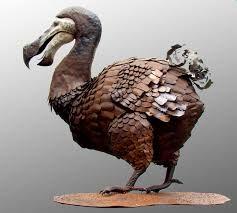 dodo - Cerca con Google