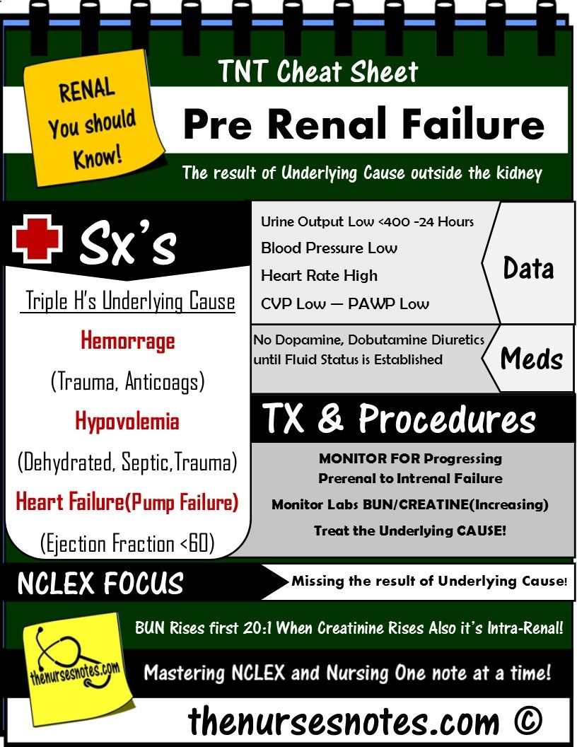Kidney Failure Stages
