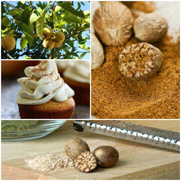 Zauber Der Gewurze Die Muskatnuss Als Universelles Gewurz Lebensmittel Essen Rezepte Tolle Rezepte
