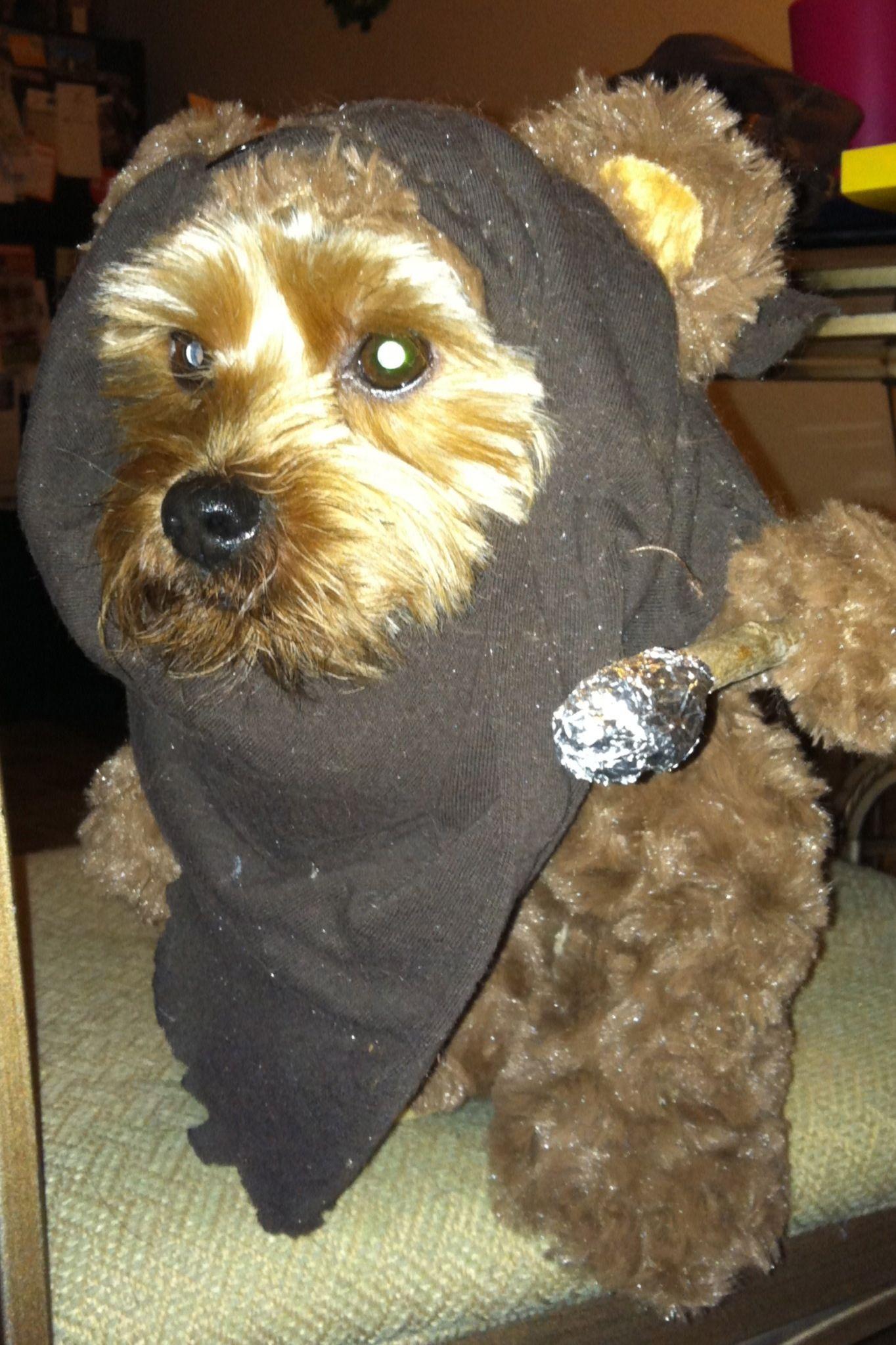 Hans In His Ewok Dog Costume Dog Costume Ewok Dog Costume Dogs