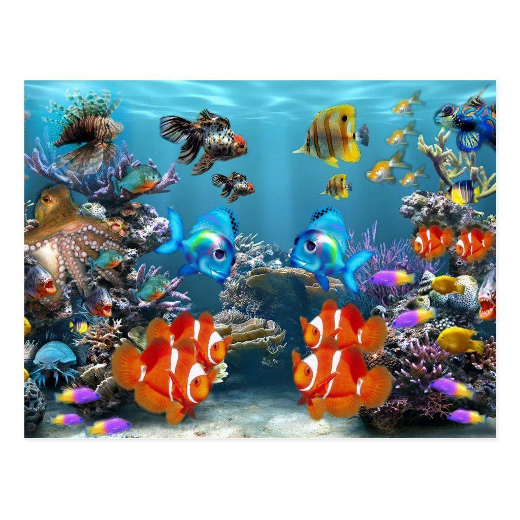 Aquarium Sealife Style Postcard Zazzle Com In 2021 Aquarium Live Wallpaper Fish Wallpaper Fish Screensaver