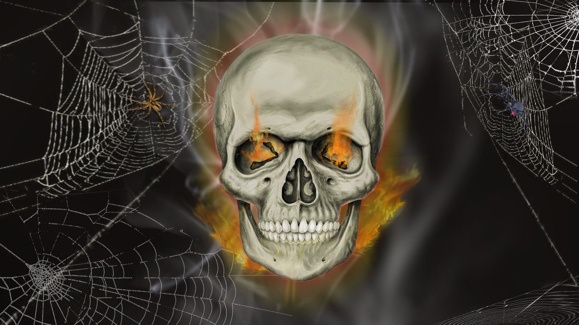 Good Wallpaper Halloween Skeleton - 97279db5fb7c7ba07be5b81c62c72db7  Perfect Image Reference_327010.jpg