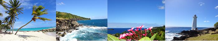 #Guadeloupe. L'archipel à découvrir...Si vous préférez au sable la découverte des fonds marins, #snorkelling et plongée vous conduiront vers la « Réserve Cousteau » et les îlets Pigeon (Basse-Terre), l'îlet du Gosier, les Saintes, l'arche sous-marine de Port-Louis...  http://plongee-en-guadeloupe.blogspot.fr/2014/10/guadeloupe-larchipel-decouvrir.html