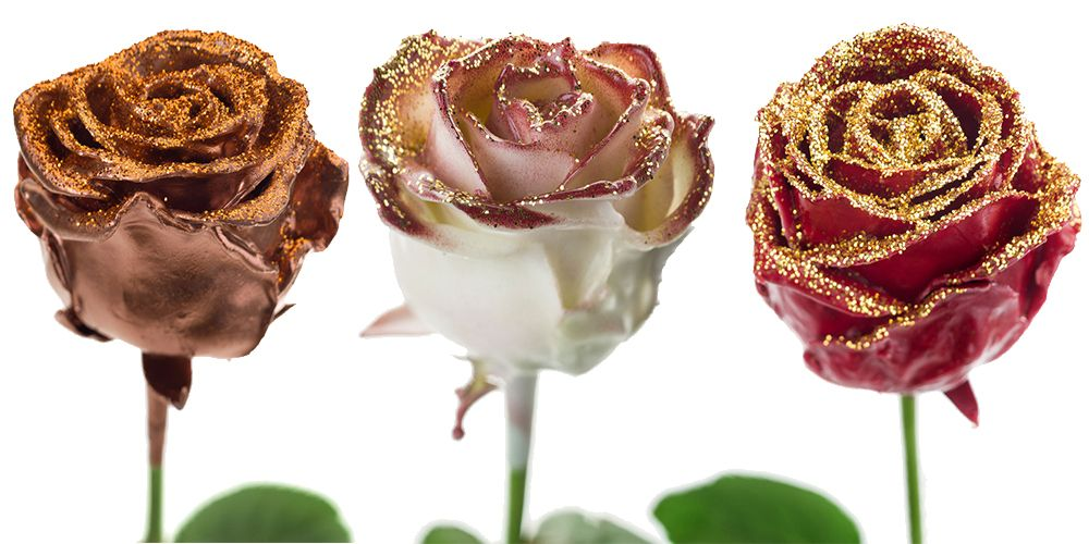 Flower Export News Item Wax Roses by Primera Gold Glitter